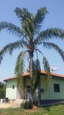Chácara Com 2 Dormitórios À Venda, 2600 M² Por R$ 600.000 - Condomínio Chácaras Carolina - Itu/sp - Ch0066