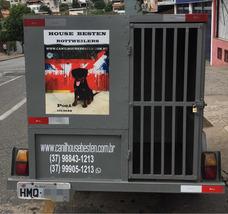Carretinha P Transportar Cães