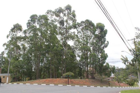 Terreno Em Jardim Indaiá, Embu Das Artes/sp De 0m² À Venda Por R$ 350.000,00 - Te321615