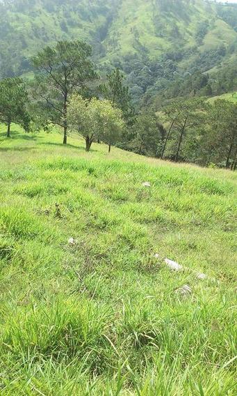 Finca De 984 Tareas Ganadera En Jarabacoa