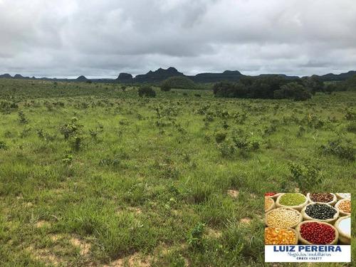 Imagem 1 de 15 de Fazenda À Venda Em Recursolândia - Ms - De 1.041 Alqueirões - 1648