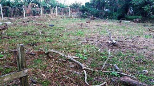 Imagem 1 de 7 de Terreno À Venda, 3575 M² - Morro Das Pedras - Florianópolis/sc - Te0993