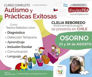 Curso Autismo Y Prácticas Exitosas Osorno