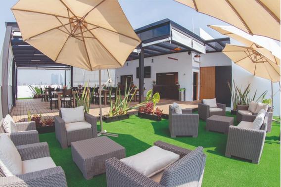Roof Garden, Sala De Juntas, Oficinas