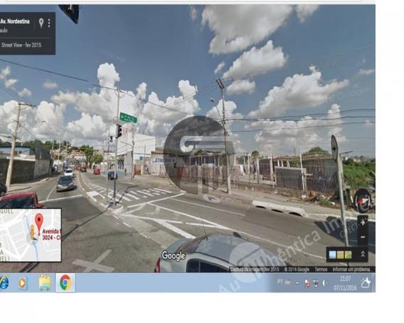 Terreno Para Venda A Vila Curuça, São Miguel - 4358 - 33823419