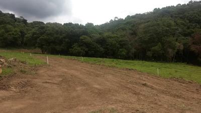 L.s Sem Consulta Ao Spc E Serasa Terrenos C/qualidade