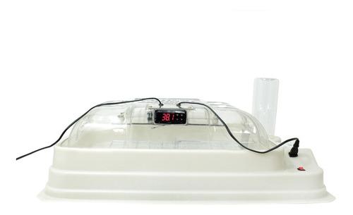 Chocadeira 70 Ovos Automática Termostato Digital - Plástica