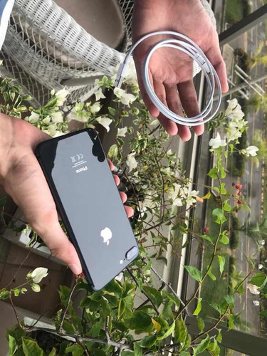 Celular iPhone 8 Plus 64gb Negro