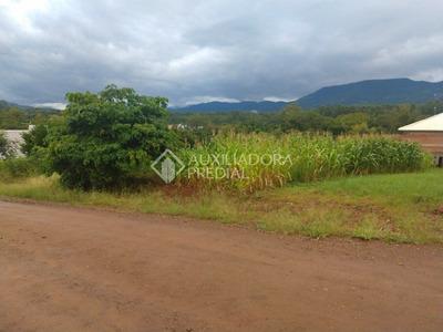 Terreno - Linha Forqueta (distrito) - Ref: 288266 - V-288266