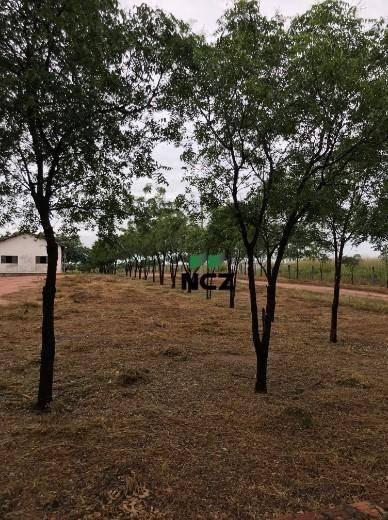 Fazenda À Venda, 32000000 M² Por R$ 3.600.000,00 - Zona Rural - Bom Jesus/pi - Fa0083