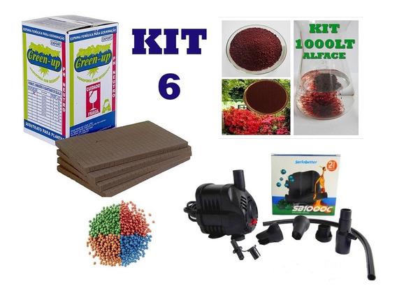 Hidroponia Kit 6 - Espuma Fenólica Nutrientes Bomba Horta