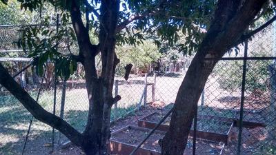 Terreno Em Nova Gardenia, Atibaia/sp De 500m² À Venda Por R$ 400.000,00 - Te103021