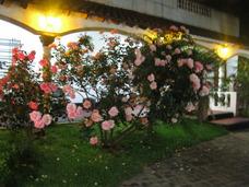 Salón De Fiestas: Casamientos, 15 Años, Aniversarios, Evento
