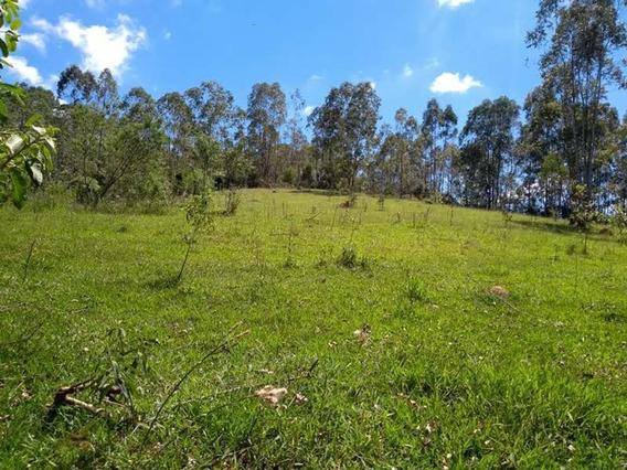 Terreno Rural À Venda, Monte Alegre Do Sul, Monte Alegre Do Sul. - Te0047