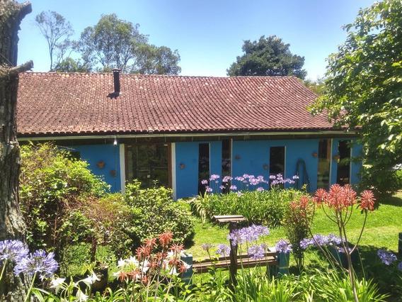 Chacara - Refugio Da Serra - Ref: 6541 - V-6541