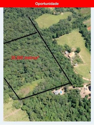 Imagem 1 de 5 de Terreno Á Venda No Bairro Piraporão, Piedade - Sp - Te00143 - 68015888