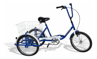 Tricicleta De Carga Y Paseo, Pioneer, Rodado 20, Liviana