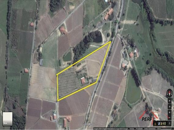 Sitio - St00001 - 2813852