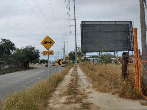 Terreno En Renta, Pesquería, Nuevo León