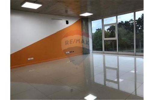 Alquiler Oficina Complejo K41 Francisco Alvarez