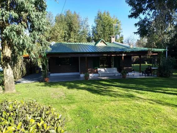 Chascomus Alquiler Casa Cabaña Quinta