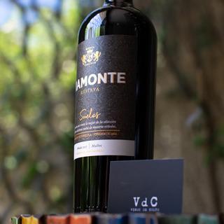 Vino Viamonte Suelos Malbec - Bodega Viamonte -
