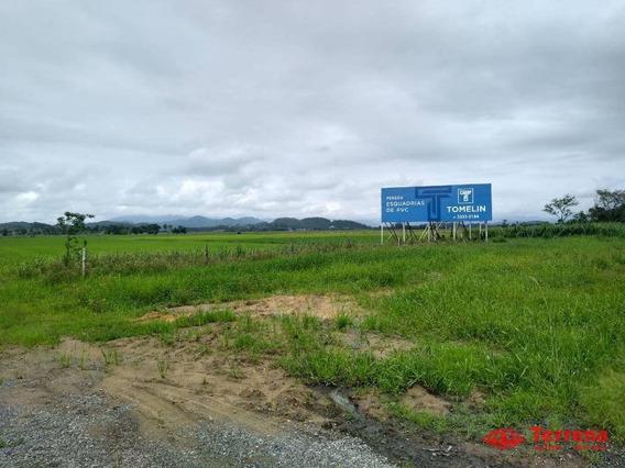 Terreno À Venda, 145000 M² Por R$ 5.100.000,00 - Frente Br 470 Km 24 Gaspar/sc - Te0126