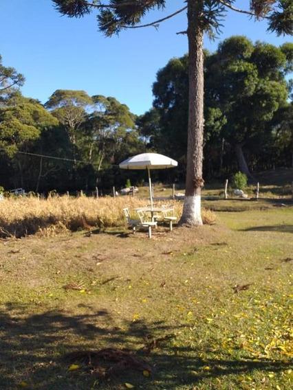 Chácara Em Zona Rural, Agudos Do Sul/pr De 0m² À Venda Por R$ 349.000,00 - Ch570902