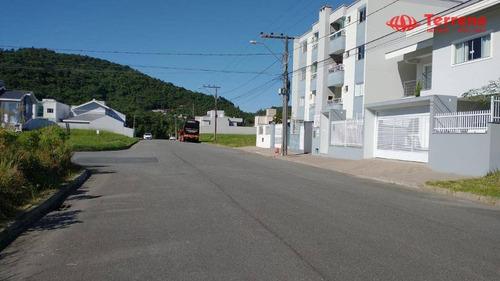 Terrenos À Venda - Loteamento Mônaco - Velha - Blumenau/sc - Te0156