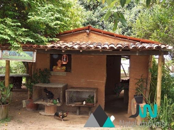 Venda De Chácara Em Macaíba, Com 1,5 Hectares, Ideal Para Eventos. - Ch00018 - 31982837