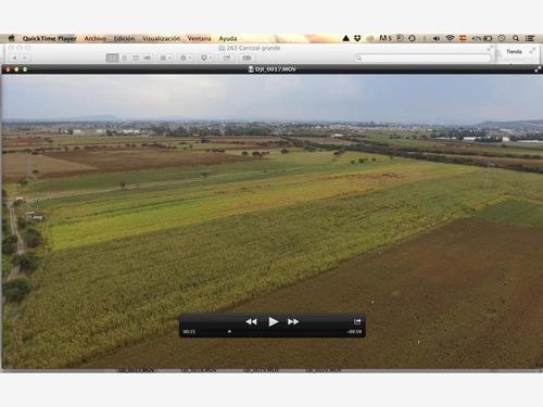 Imagen 1 de 5 de Terreno Comercial En Venta Carrizal Grande