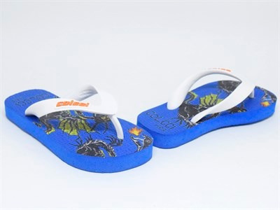 Chinelo Colcci Kids Dragon