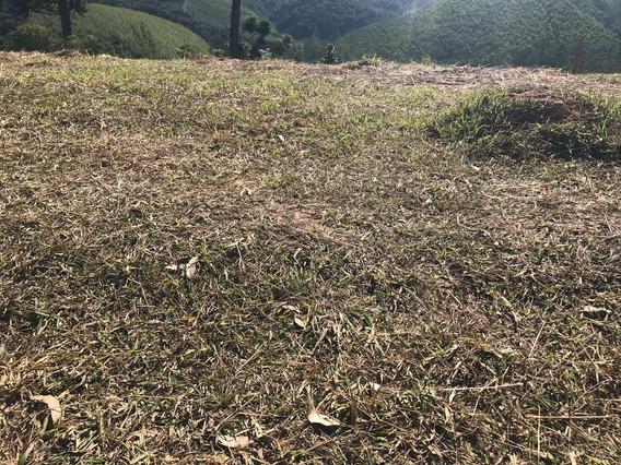 09a- Terreno Em Área Rural!