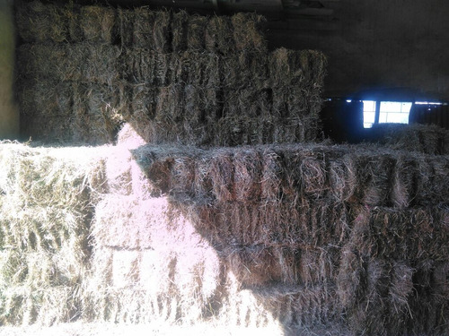 Imagen 1 de 1 de Fardos Alfalfa Mezclas Y Decoración