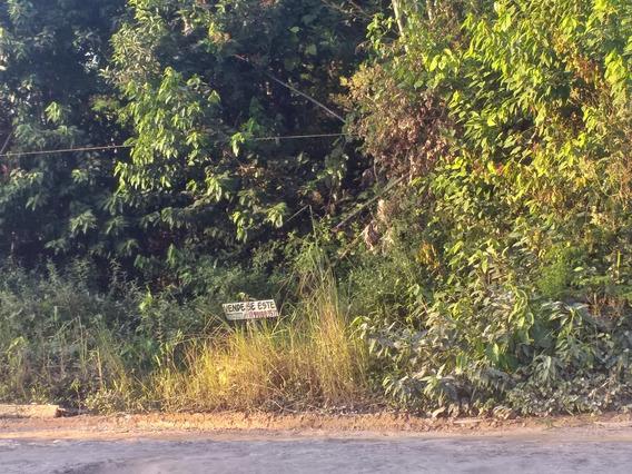 Lindo Terreno Plano E Documentado 20x90mts Da Vila Lourenço