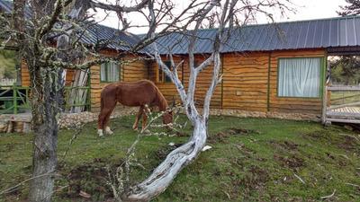Cabaña En Lago Moquehue