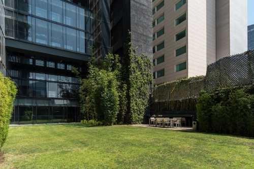 Departamento En Renta En Reforma A Una Cuadra De La Glorieta De La Palma Cdmx