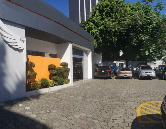 Local Comercial Y/o Corporativo En Alquiler, Piantini