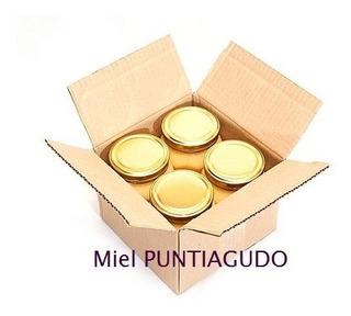 Miel De Bosque Nativo X 4 Frascos De 1 Kg. Envío Gratis.