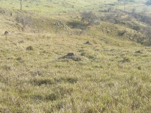 16- Terrenos De 5000m Com Boa Topografia,a Venda Em Jacareí
