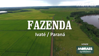 Fazenda 550 Alq - Ivaté / Paraná - As Margens Do Rio Ivaí - Fa0011