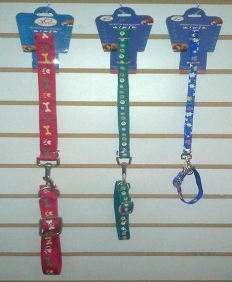 Correa Y Collar Para Perros (diferentes Tamaños)
