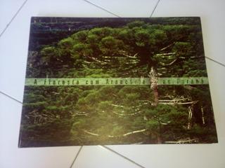 A Floresta Com Araucária No Paraná Paulo Roberto Castella..#