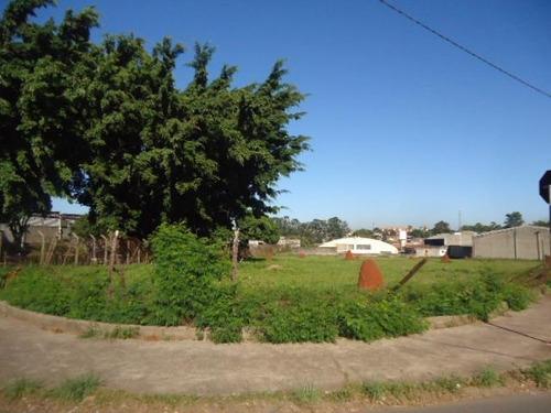 Terreno À Venda, 3623 M² Por R$ 2.000.000,00 - Distrito Industrial I - Santa Bárbara D'oeste/sp - Te0049