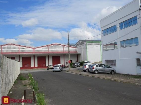 Galpão Na Área Industrial De São José - 30514