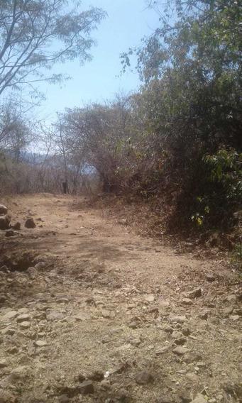 Rancho Rústico 300 Hectáreas En Pihuamo Jalisco