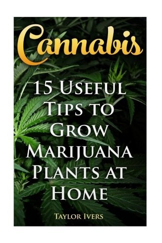 Cannabis 15 Consejos Útiles Para Cultivar Plantas De Marihu