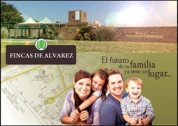 Terreno - Fincas De Alvarez
