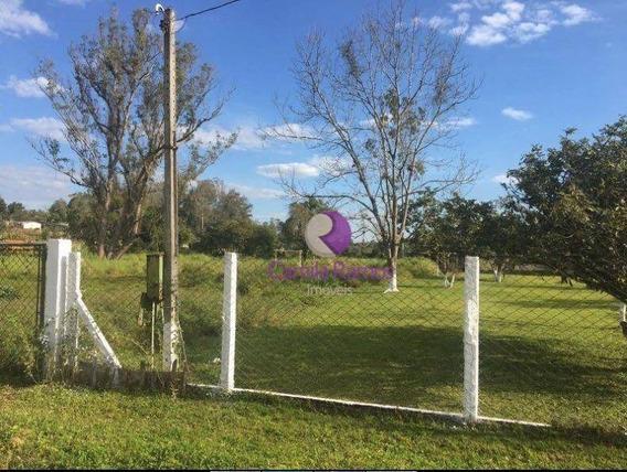 Terreno Residencial À Venda, Estância Tijuco Preto, Suzano. - Te0095