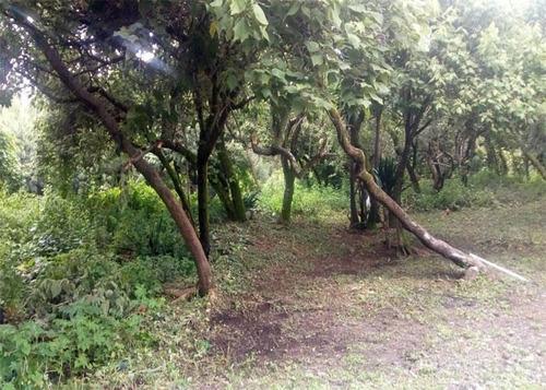 Imagen 1 de 4 de Terreno - Venta Fraccionamiento Rancho Cortes, Cuernavaca